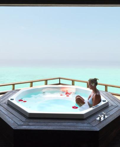 whirlpool systemreiniger 500 ml willkommen im online shop. Black Bedroom Furniture Sets. Home Design Ideas